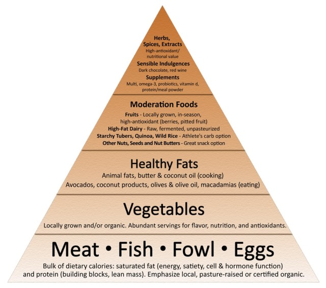 primal, paleo, health, food, food pyramind